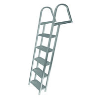 Picture of 5-step Angled Dock Ladder